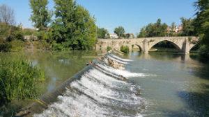 La Pamplona actual: Parque del Arga. Del puente de Santa Engracia al Puente de San Pedro